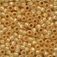 Perles Size 8° Beads 18822