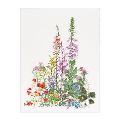 American Wild Flowers - Kit toile Lin - Thea Gouverneur
