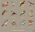 Grilles broderie Oiseaux